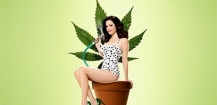 Le quiz du mardi : Nancy de Weeds